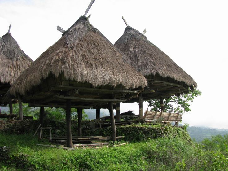 Some traditional huts with a spectacular view in Quelicai, Timor Leste. #RuralScenes #TimorLeste #Huts Photo credit: www.globeimages.net/data/thumbnails/90/quelicai_east_timor.jpg