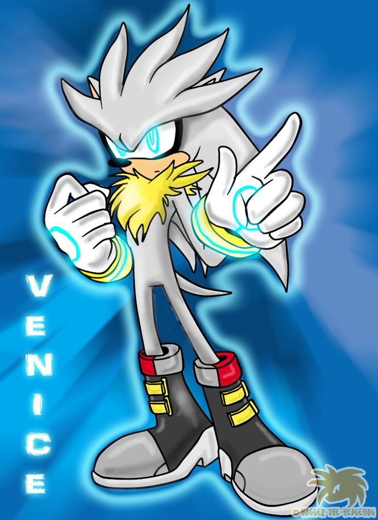pin by clint rodefer on silver the hedgehog pinterest
