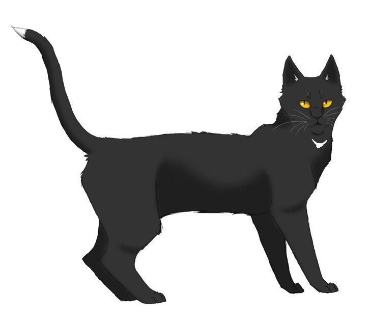 Lithestep Warrior Cats