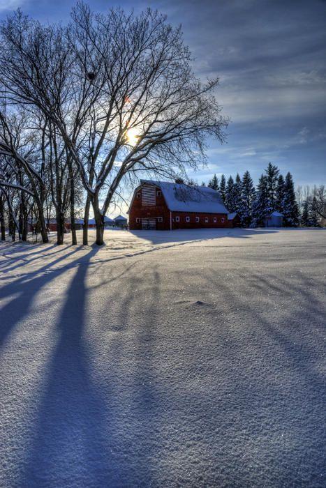Second Chance Farm | Rural Saskatchewan | Canada | Photo By Wayne Stadler
