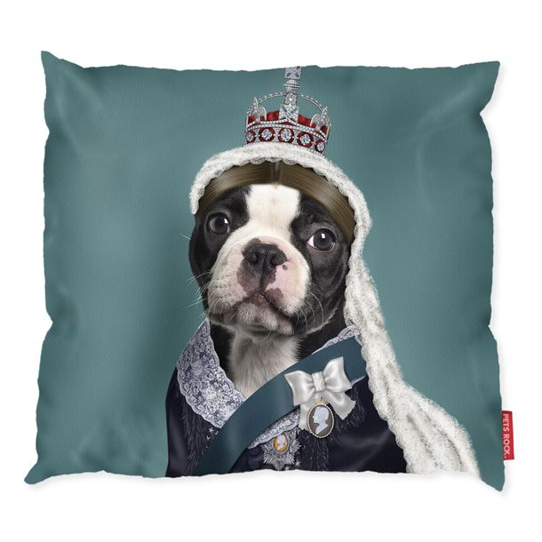 Best Images About Boston Terriers On Pinterest Pets