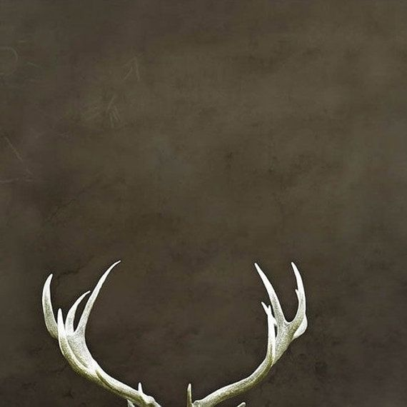 Deer antler print antlers wall decor autumn neutral men for Antlers decoration