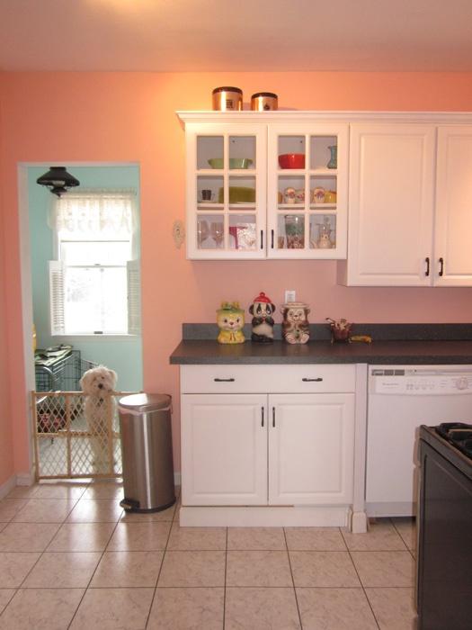 Peach kitchen with a Coton de Tulear!  Interiors  Pinterest