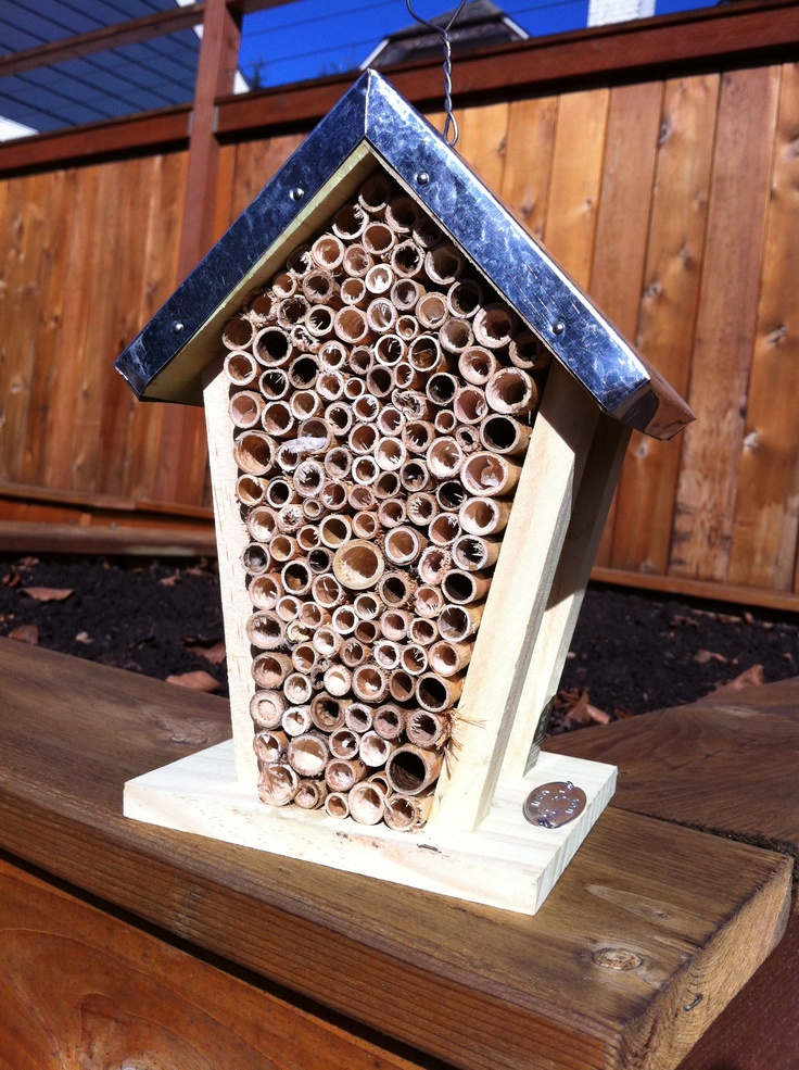 Make Your Own Orchard Mason Bee House Gardening Pinterest