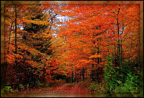 Best Places To Enjoy Beautiful Fall Colors