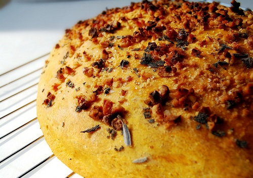 Pumpkin focaccia with sage and walnuts | Recipes to Try | Pinterest