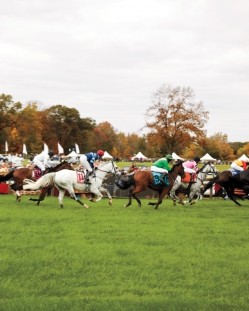 Tailgating at the Annual October Horse Races at Moorland Farm