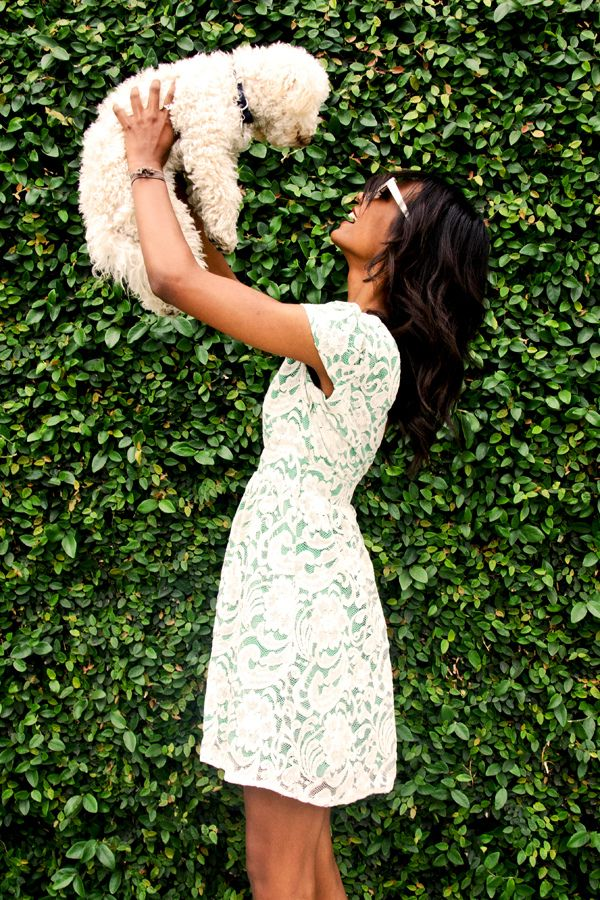 want this dress!...and possibly that puppy