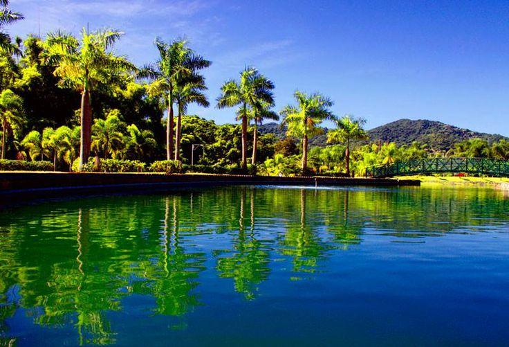 Caguas puerto rico puerto rico for Actividades en el jardin botanico de caguas