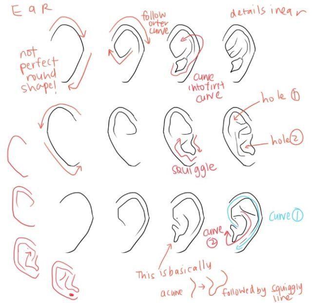 Pictures Of How To Draw An Anime Ear Rock Cafe