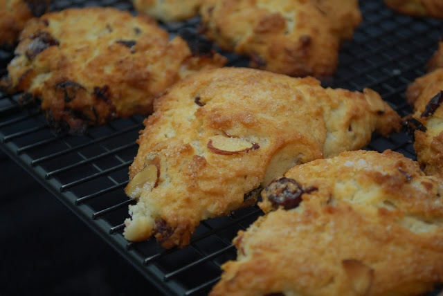 That Short Girl's Blog: Apricot Cranberry Scones with Toasted Almonds