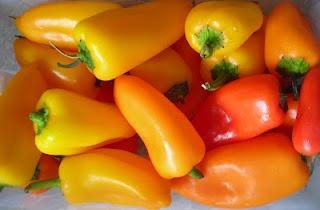 Easy Crock pot bell pepper casserole | Recipes To Try | Pinterest