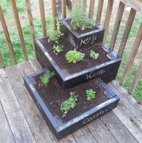 Easy Diy Herb Garden Herb Garden Pinterest
