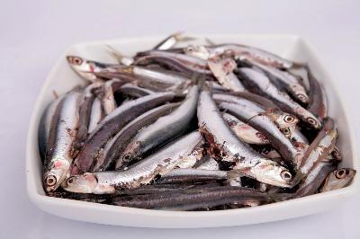 high uric acid medicine in ayurveda diet foods for high uric acid can vitamins cause high uric acid