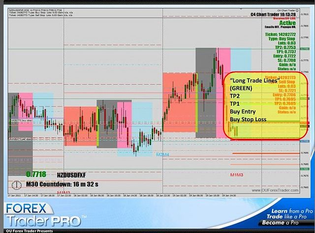 How often do professional forex traders trade