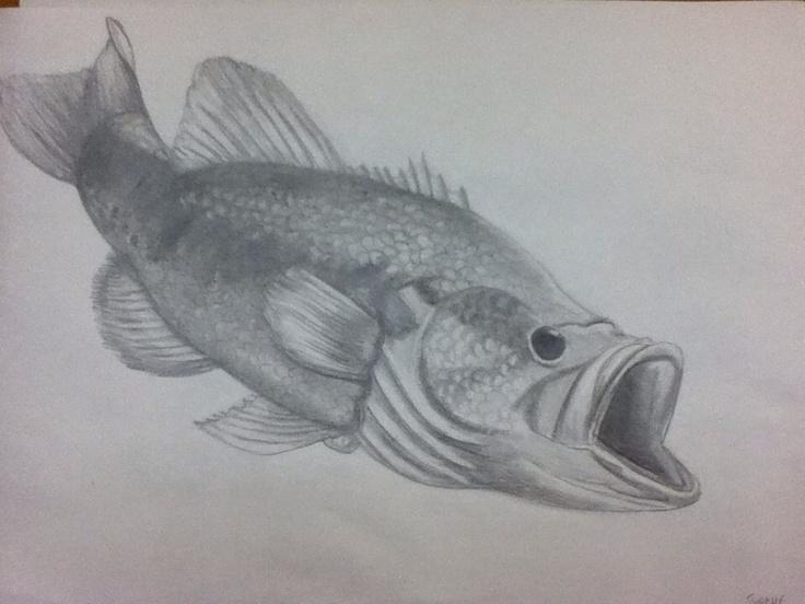 large mouth bass drawing largemouth bass pinterest