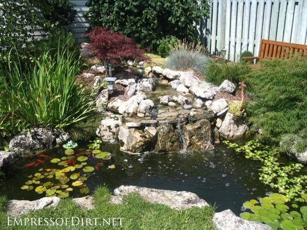 Huge Backyard Pond : backyard pond ideas for all budgets  Medium size inground garden pond