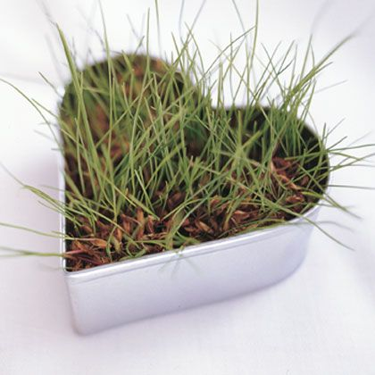 Valentine Craft: Heart of Grass | Nature Crafts | FamilyFun