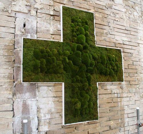eco graffiti with moss
