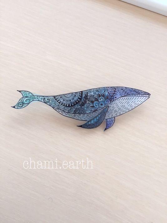 シロナガスクジラの画像 p1_7