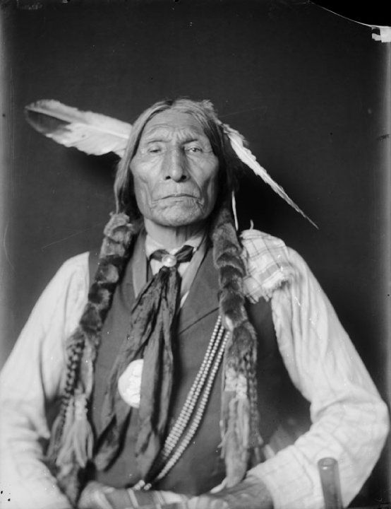indian chief and wolf - photo #15