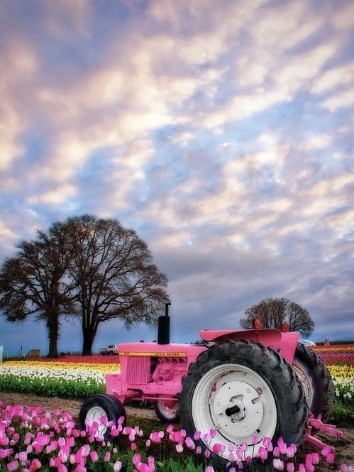 TractorsPink John Deere Tractor