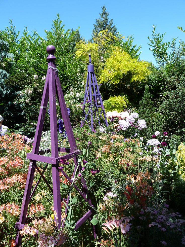 Pin by Pauline Johnston on gardening Pinterest