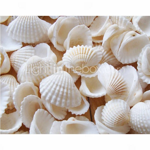 Beach Themed Seashell Wedding Shower Table Decorations (Pack of 90)