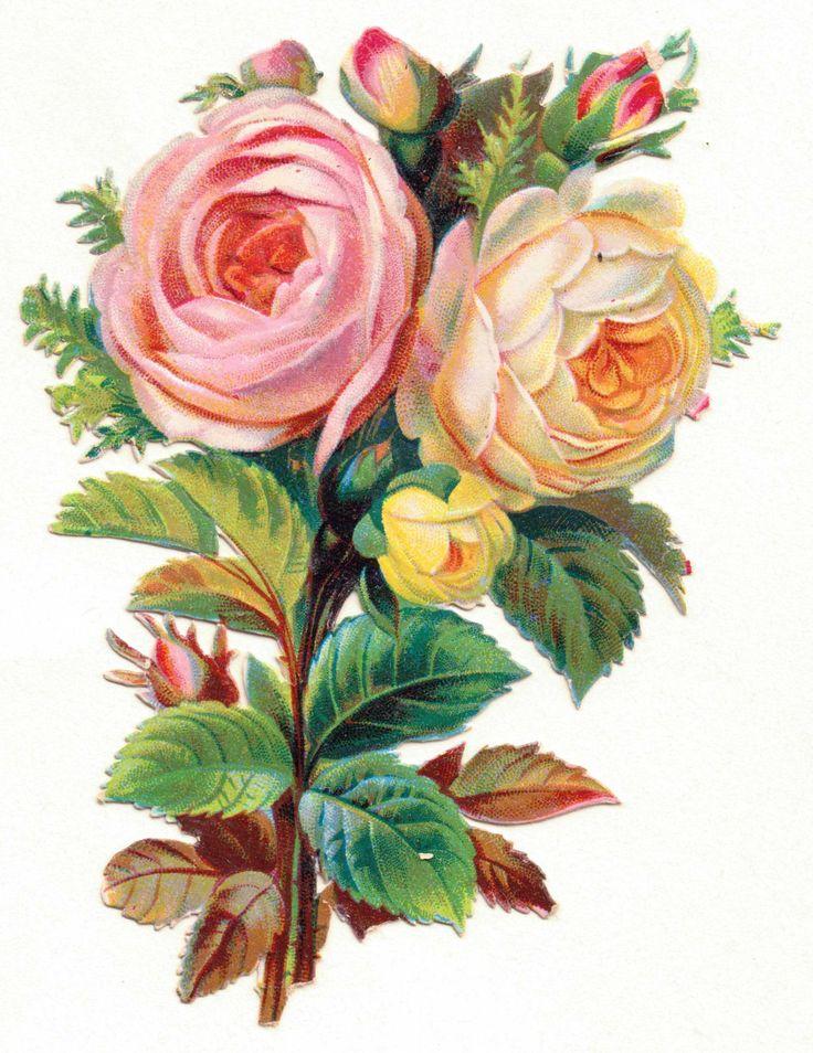 Oblaten-Glanzbilder-scrap-chromo: Wunderschöner Rosenstrauß um 1900 - 16x11cm de.picclick.com