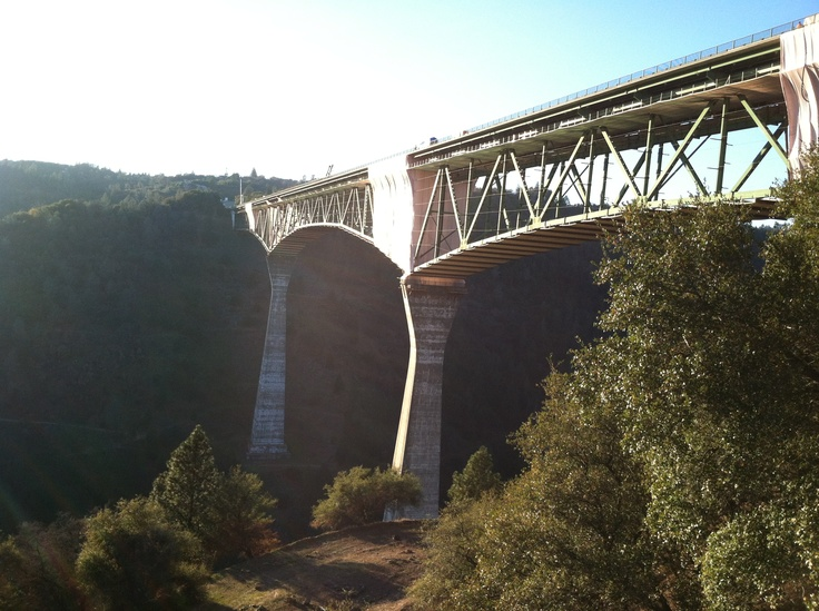 Forrest Hill Bridge ~ condolences to the family who lost their son.