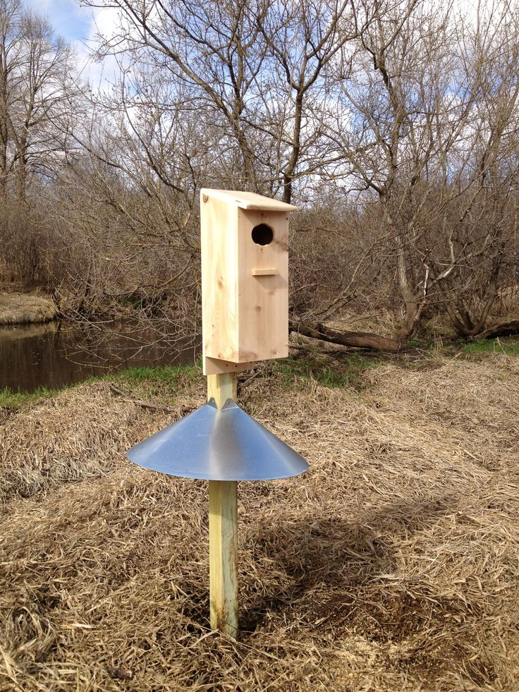 Wood Duck House Bird HousesFeeders Pinterest
