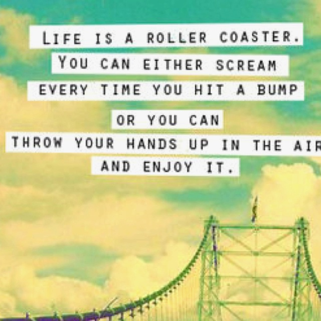 love and roller coaster When you first begin to fall for someone, you fall in love with the way they make  you feel does conversation with them stimulate you do they.