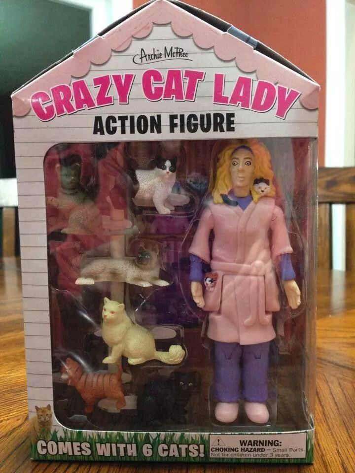 Crazy Cat Lady action figure! | Humor | Pinterest