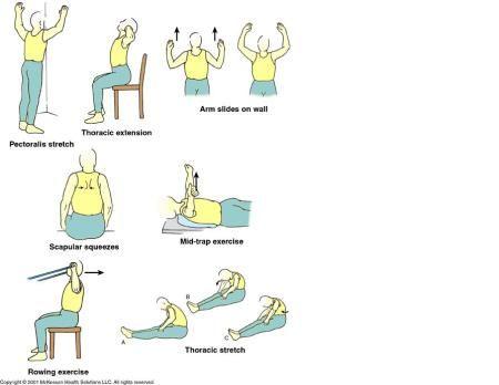 Back Strengthening Exercises: Upper Back Strengthening ...