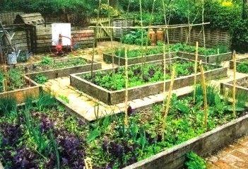 Raised Bed Vegetable Growing BrandAlliance Community