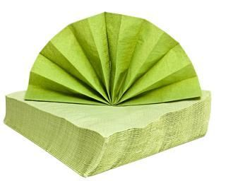 Paper Napkin Folding Instructions
