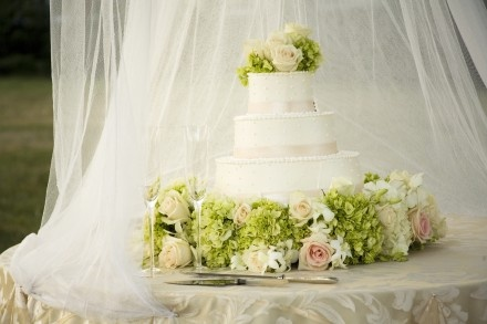 A beautiful cake for an outdoor wedding!