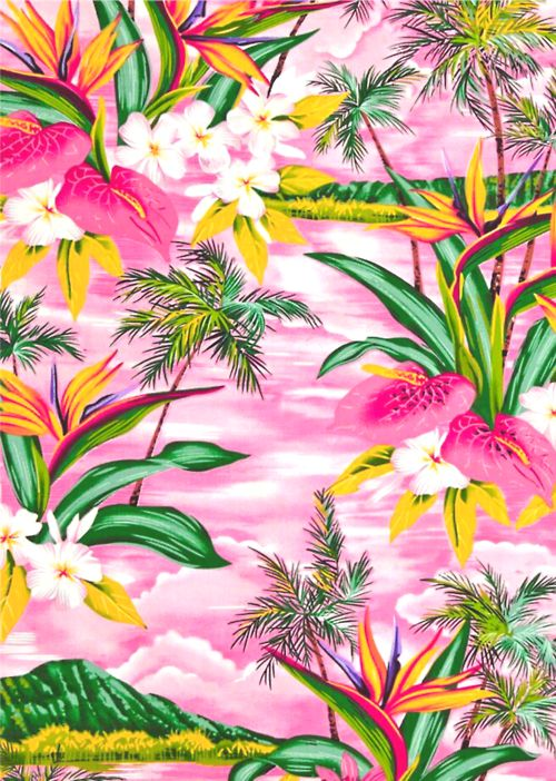 20 tropical backgrounds - photo #36