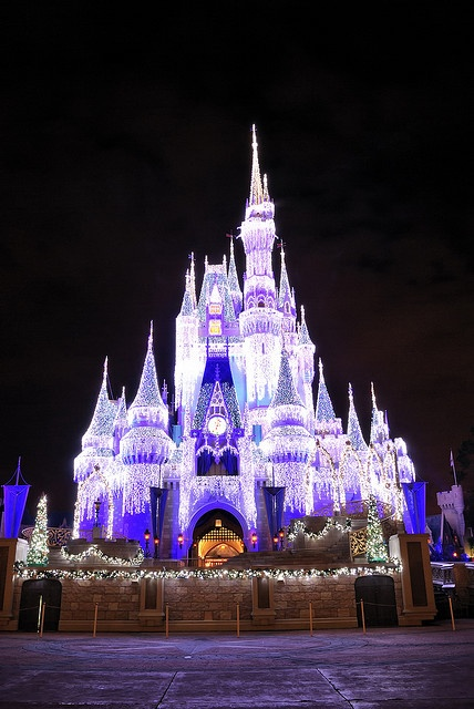 I don't think there could be anything more beautiful than disney world during the holidays. Someone take me like now.
