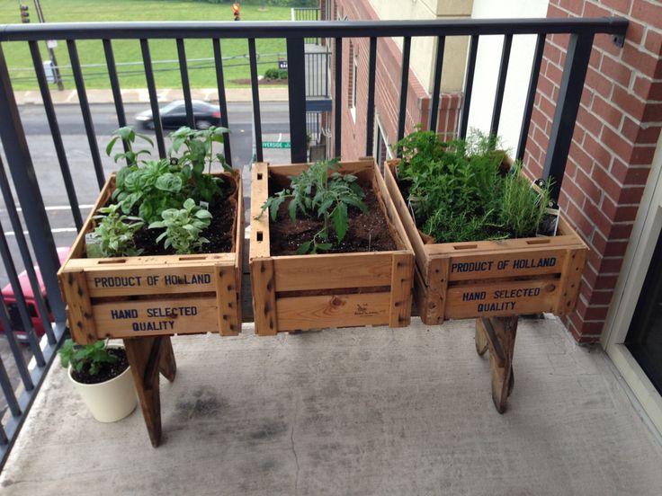 Balcony Herb Garden Homegirl Pinterest