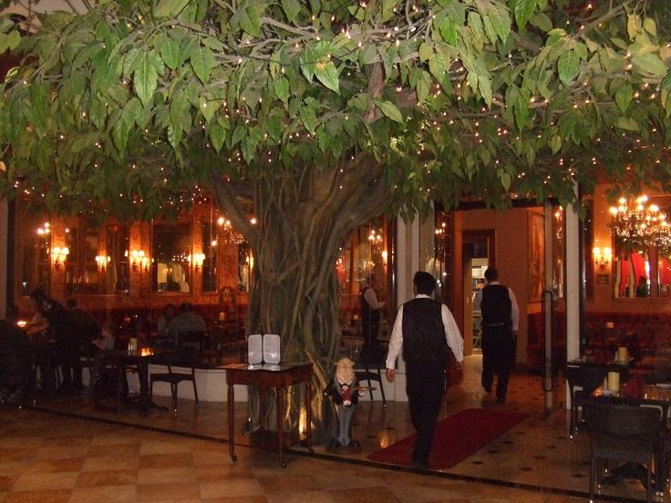 Romantic restaurant winter park fl winter park florida pintere for Restaurants in winter garden fl