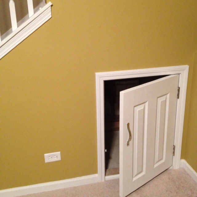 access door for under stair storage home pinterest