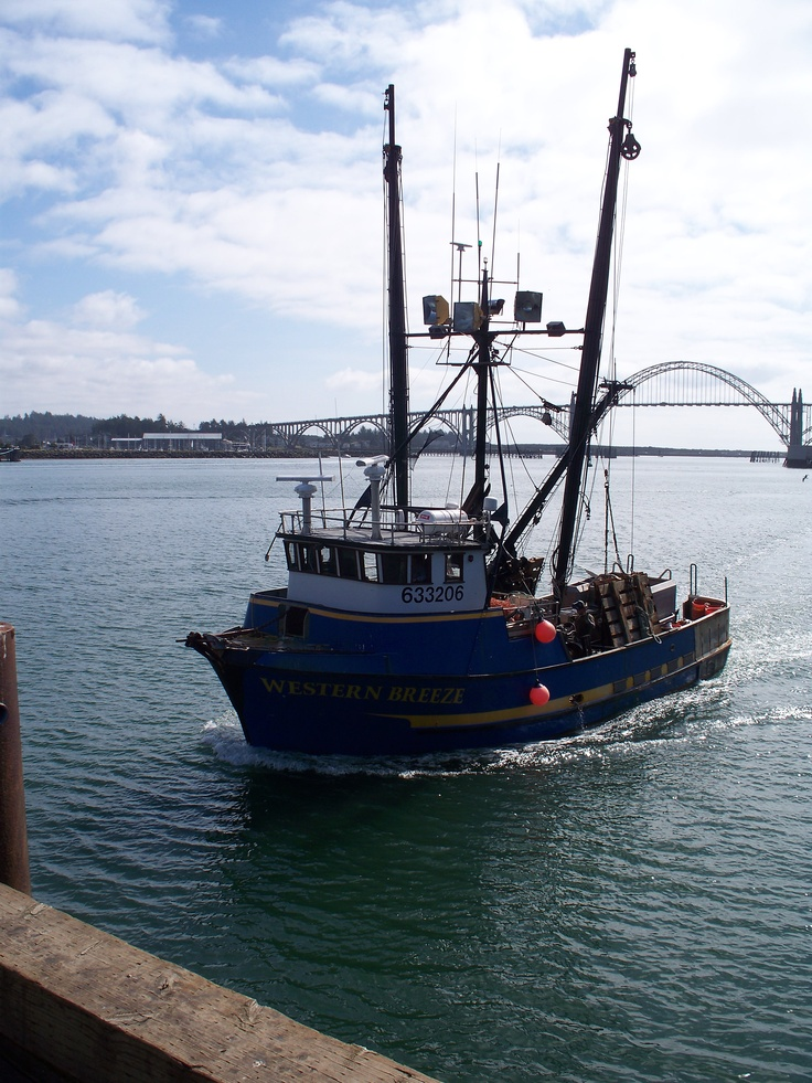 fishing boat returning to port yaquina bay newport