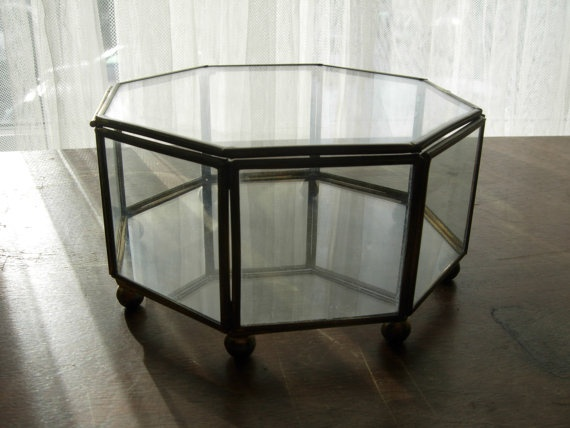 Terrarium Coffee Table Lucite And Chrome Terrarium Coffee Table At 1stdibs Blvd Display