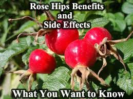 Vitamin c with rose hips side effects