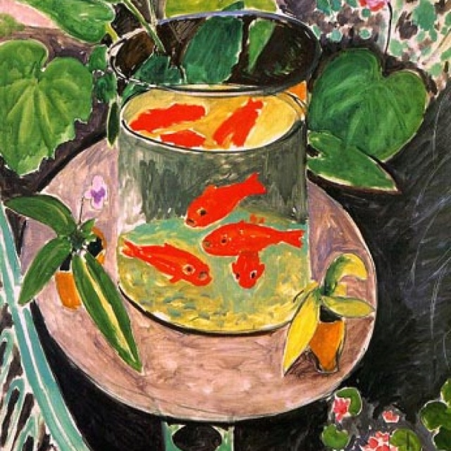 henri matisse goldfish Henri matisse, goldfish and palette, 1914, the museum of modern art, ny goldfish were introduced to europe from east asia in the 17th century, while the us saw them around 1850, where they quickly gained popularity.