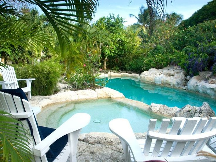 Small Natural Backyard Pool : Natural Pools