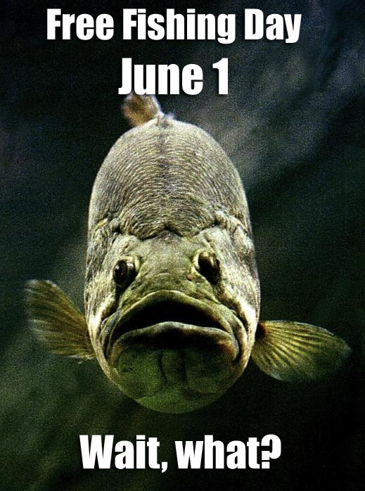 You can fish without a license on national fishing day for Tpwd fishing license