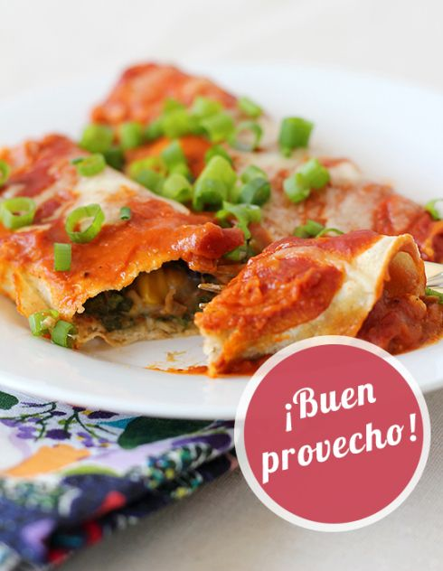 Vegetarian Enchiladas Can't wait to try out a bunch of new veggie ...