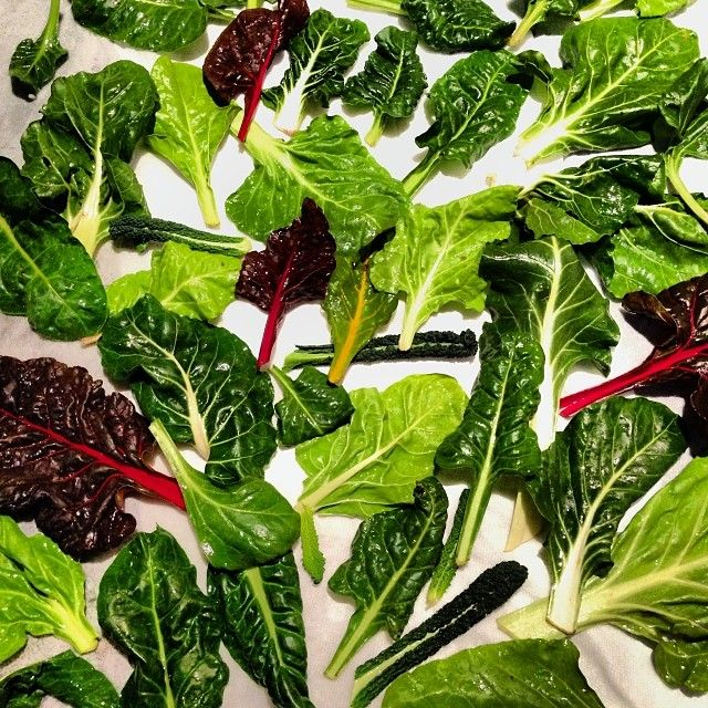 Swiss chard and a few baby Dino kale leaves.. simply delicious! | Raw ...
